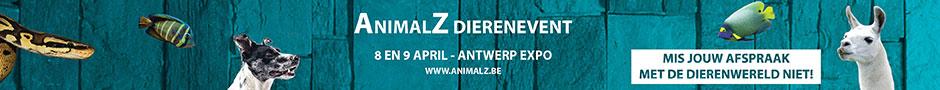 AnimalZ 2017